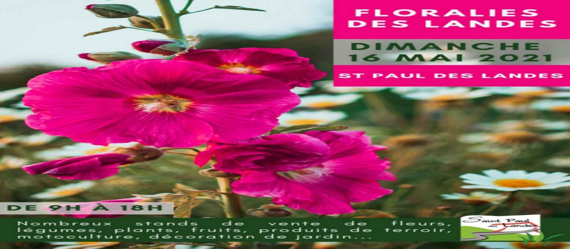 Floralies-des-landes bandeau site